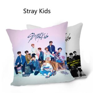 stray kids pillow cushion